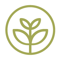 Nachhaltige Reinigungslotion - Vorteile für deinen Planeten: